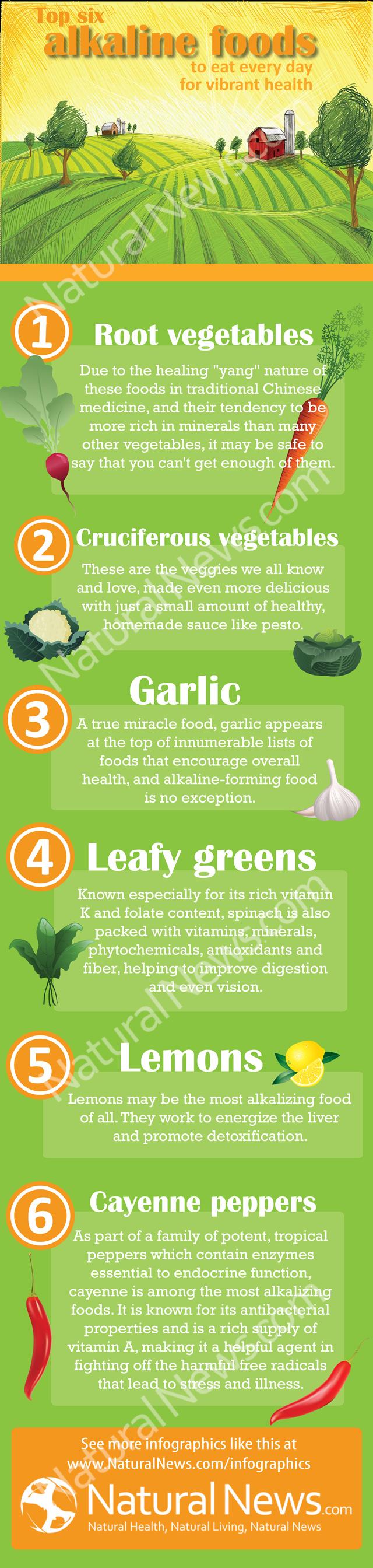 Top 6 alimentos alcalinos para una salud vibrante